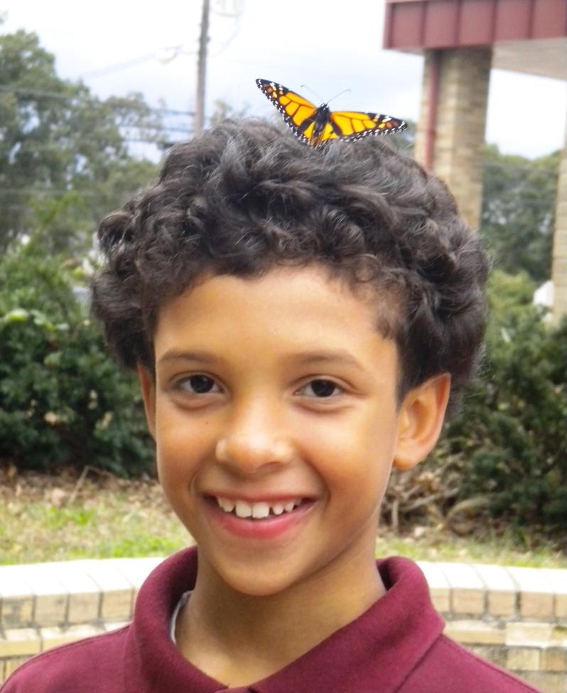 robert's monarch head